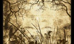 فرش, زخارف, فوتوشوب, Brushes, Photoshop, trees, foliage