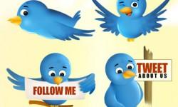ايقونات تويتر Twitter Icon